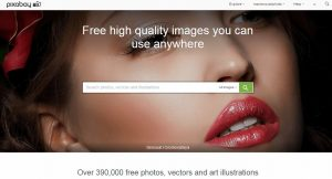 reference photos for artist pixabay